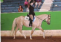 Laura and Paparika Pete (bred by E Bar Z and owned by Darcy Nogle)